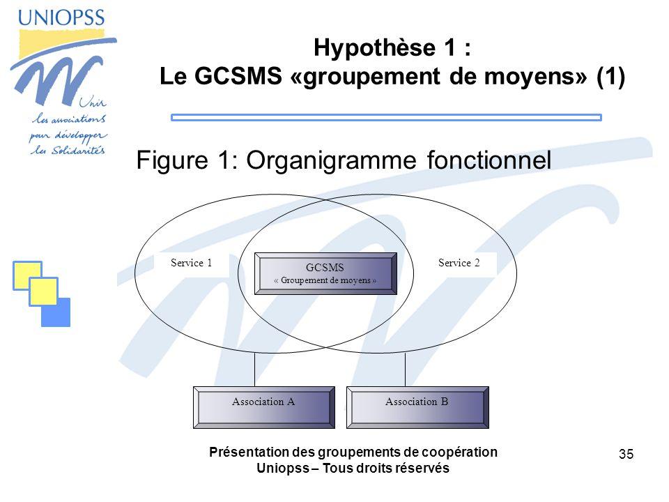 Hypothèse 1 : Le GCSMS «groupement de moyens» (1)