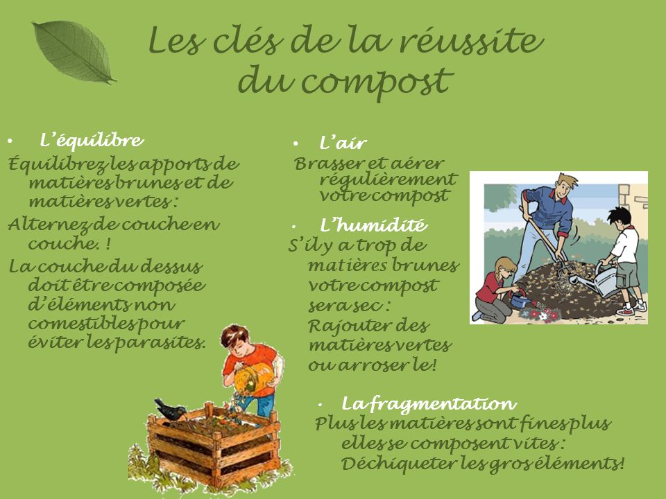 Les clés de la réussite du compost