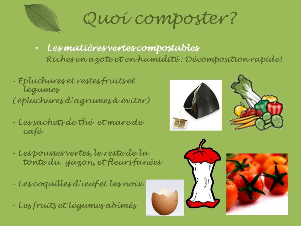 Quoi composter Les matières vertes compostables