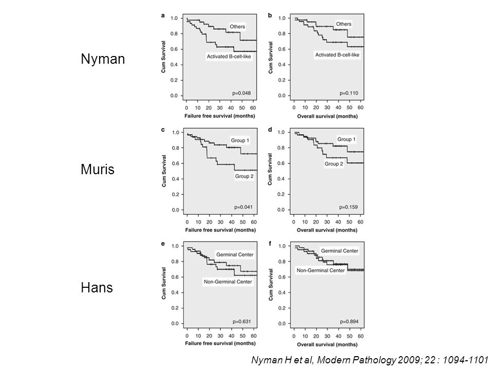 Nyman Muris Hans Nyman H et al, Modern Pathology 2009; 22 : 1094-1101