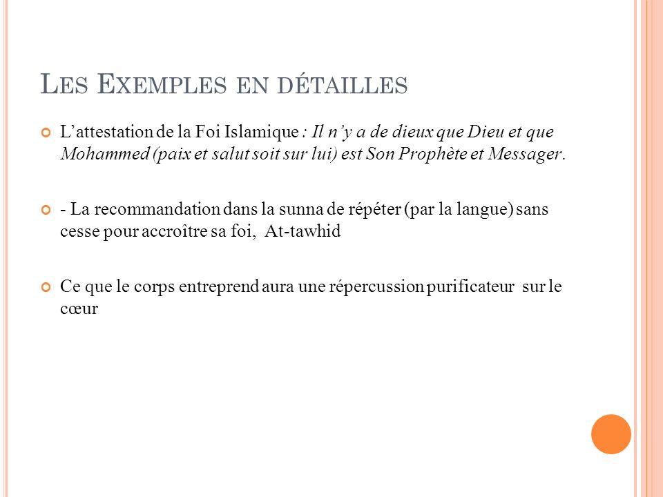 Les Exemples en détailles
