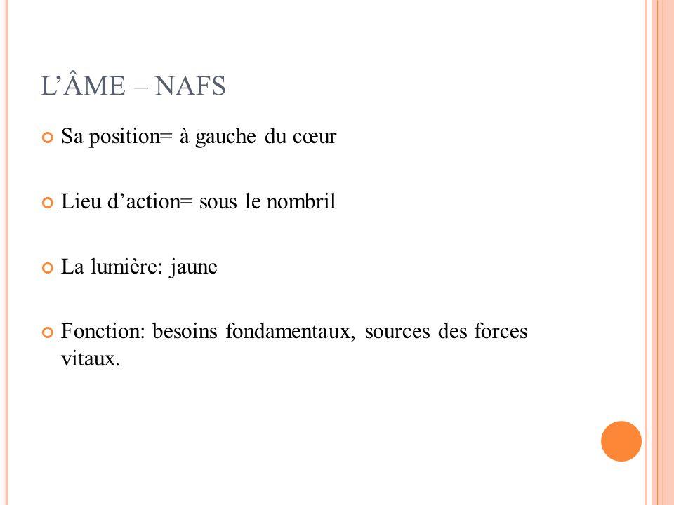 L'ÂME – NAFS Sa position= à gauche du cœur