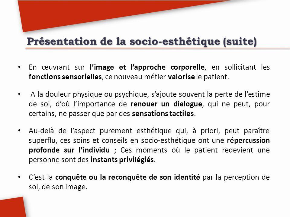 Présentation de la socio-esthétique (suite)