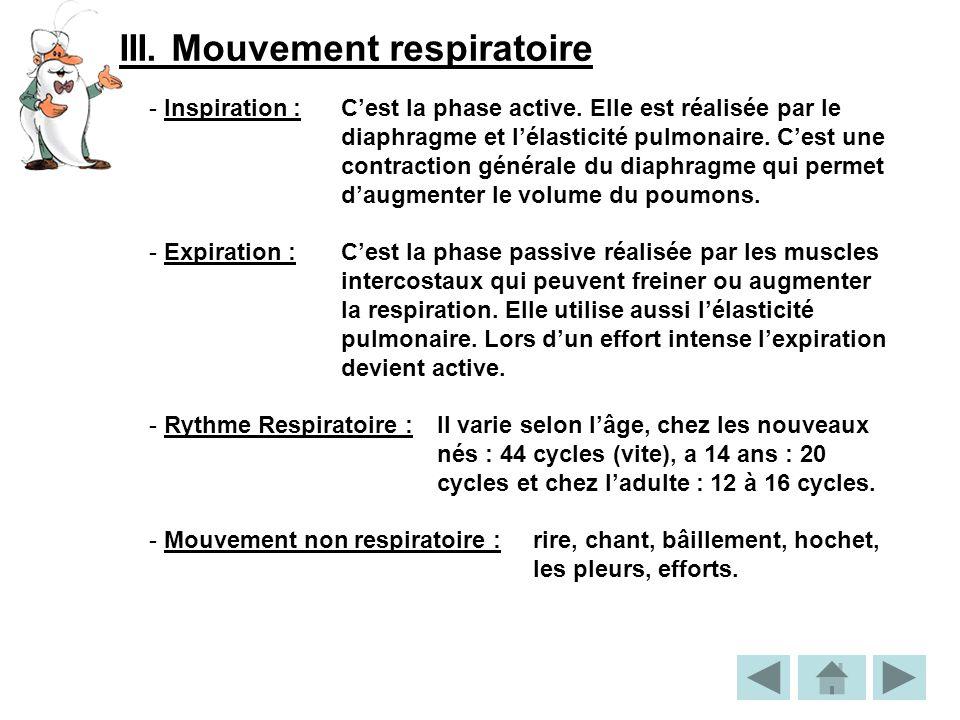 III. Mouvement respiratoire