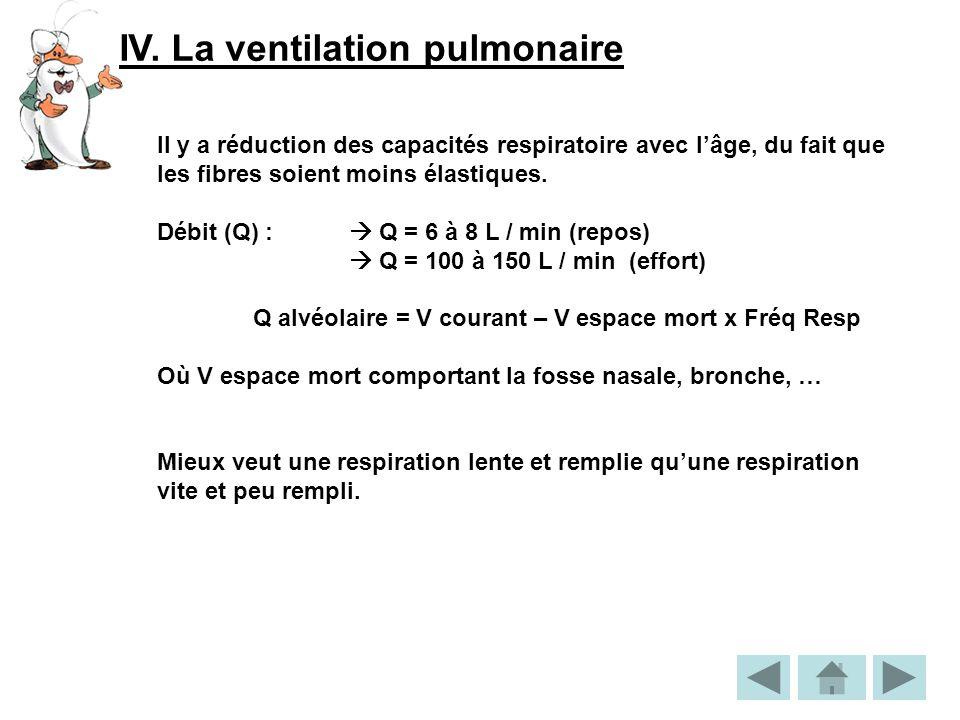 IV. La ventilation pulmonaire
