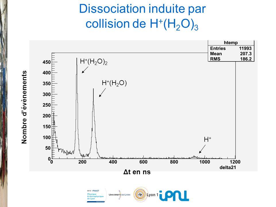 Dissociation induite par collision de H+(H2O)3