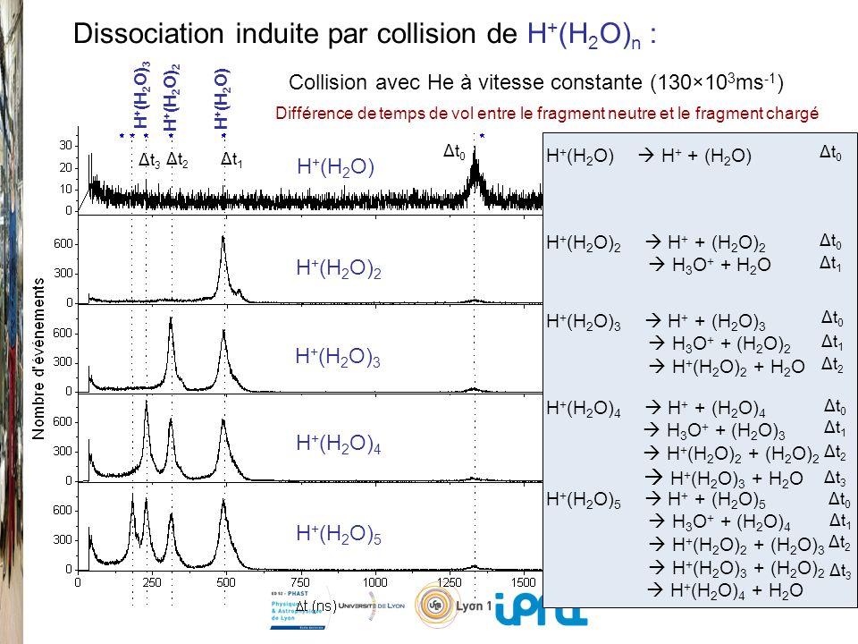 Dissociation induite par collision de H+(H2O)n :