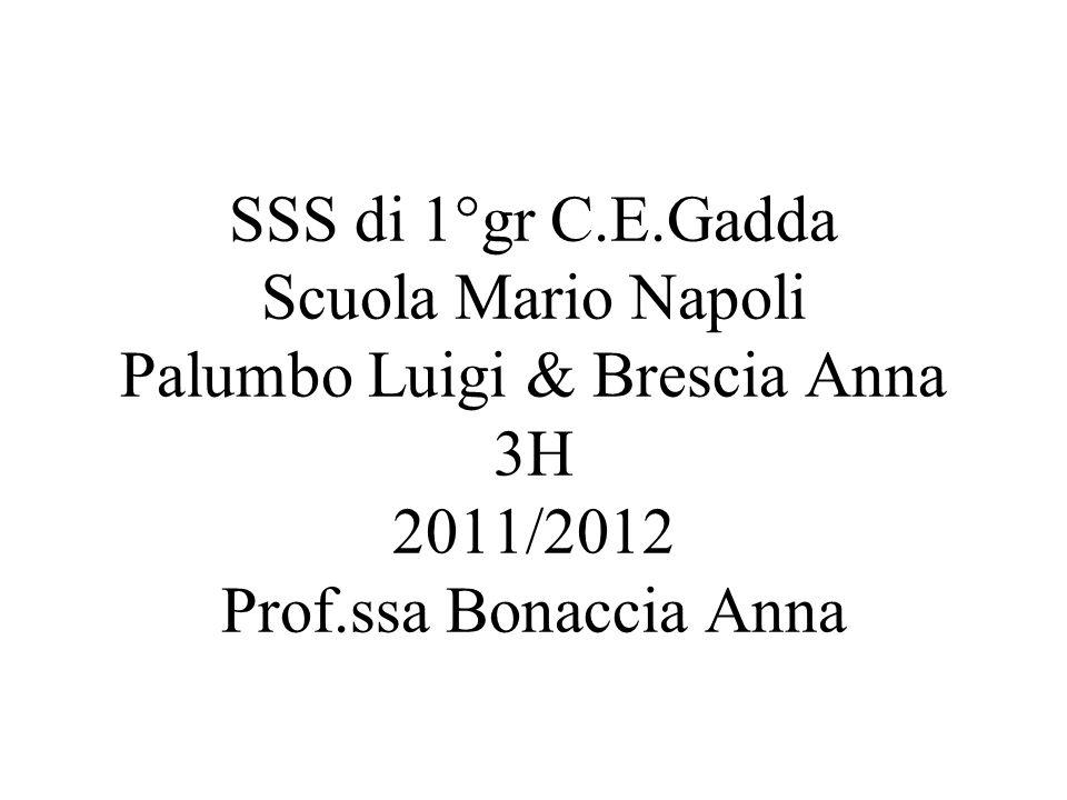 SSS di 1°gr C.E.Gadda Scuola Mario Napoli Palumbo Luigi & Brescia Anna 3H 2011/2012 Prof.ssa Bonaccia Anna