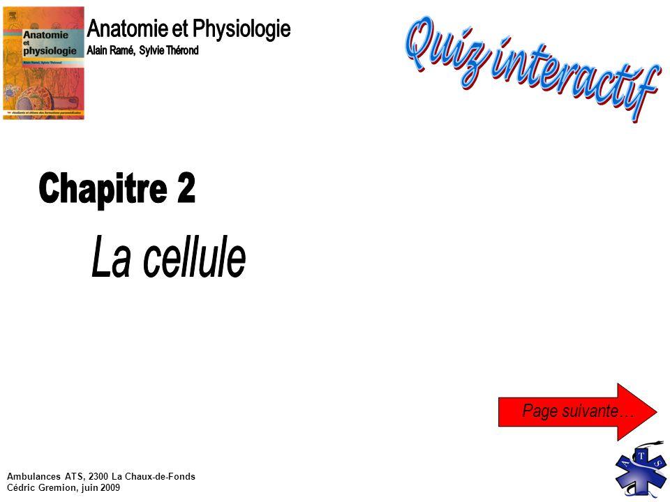 Fein Anatomie Und Physiologie 2 Quiz Galerie - Menschliche Anatomie ...