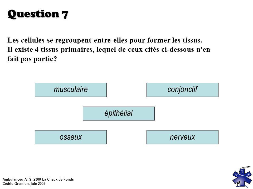 Question 7 musculaire conjonctif épithélial osseux nerveux