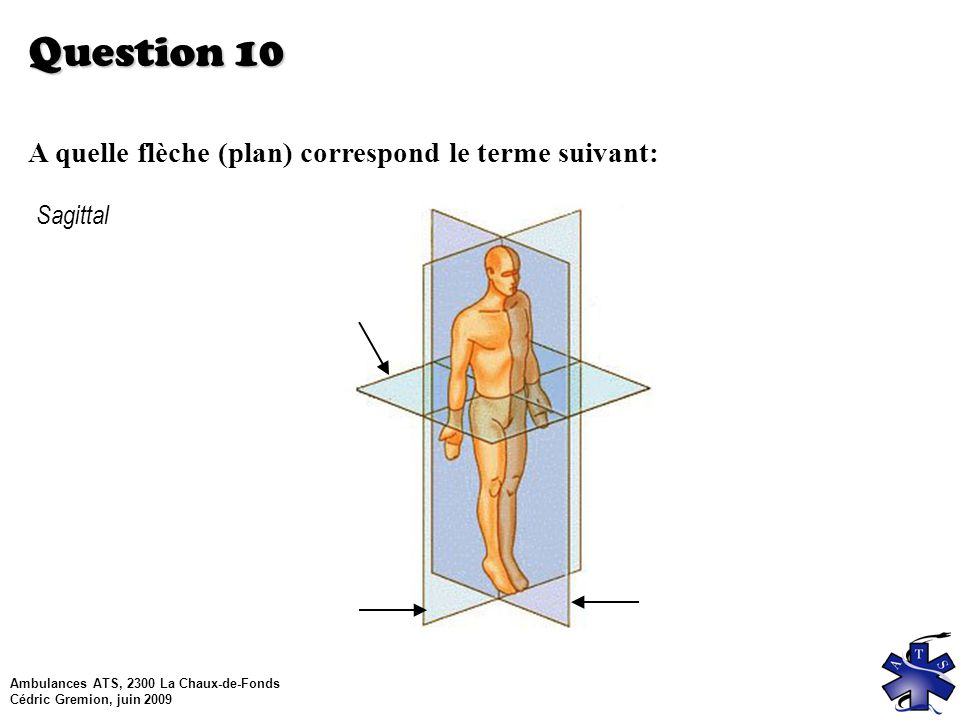 Question 10 A quelle flèche (plan) correspond le terme suivant: