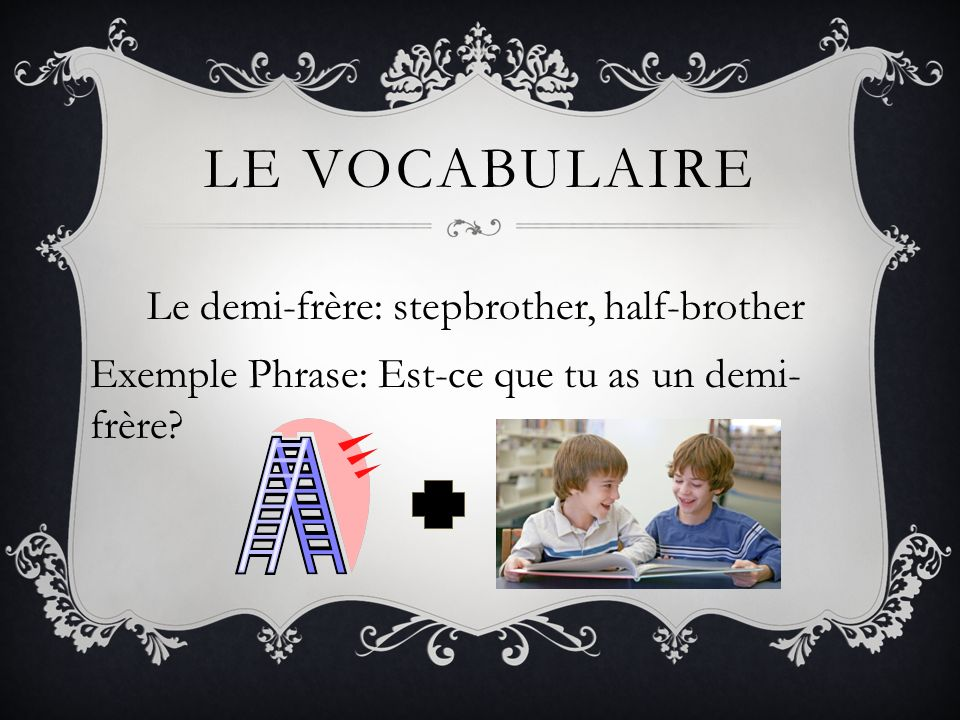 Le vocabulaireLe demi-frère: stepbrother, half-brother Exemple Phrase: Est-ce que tu as un demi-frère.