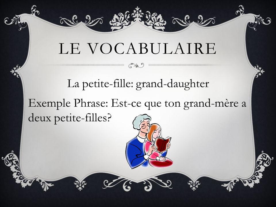 Le vocabulaireLa petite-fille: grand-daughter Exemple Phrase: Est-ce que ton grand-mère a deux petite-filles.