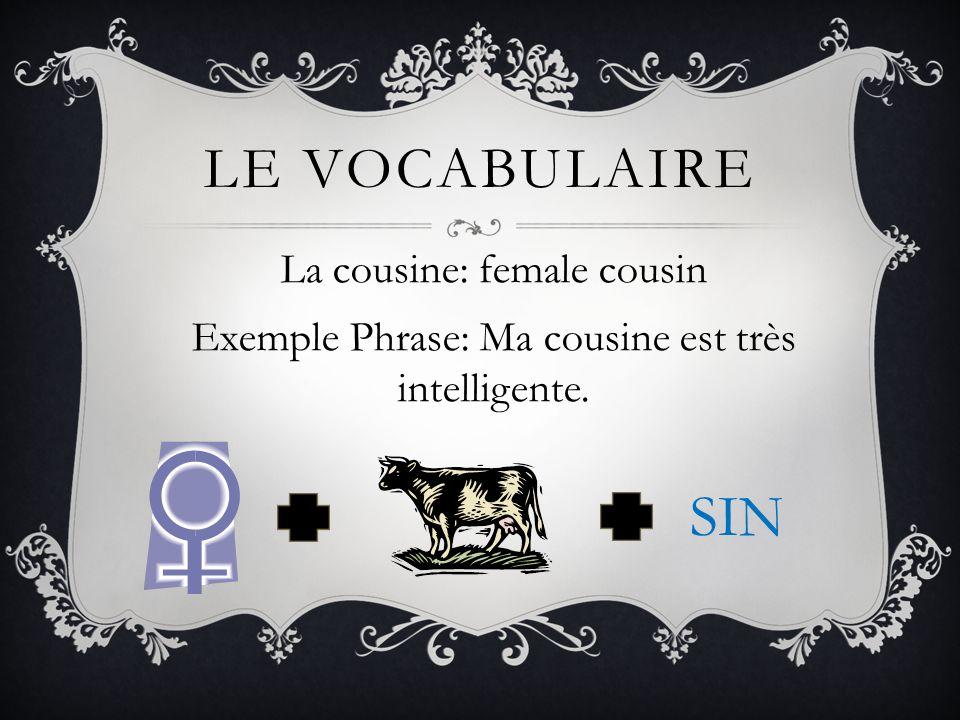 Le vocabulaire La cousine: female cousin Exemple Phrase: Ma cousine est très intelligente. SIN