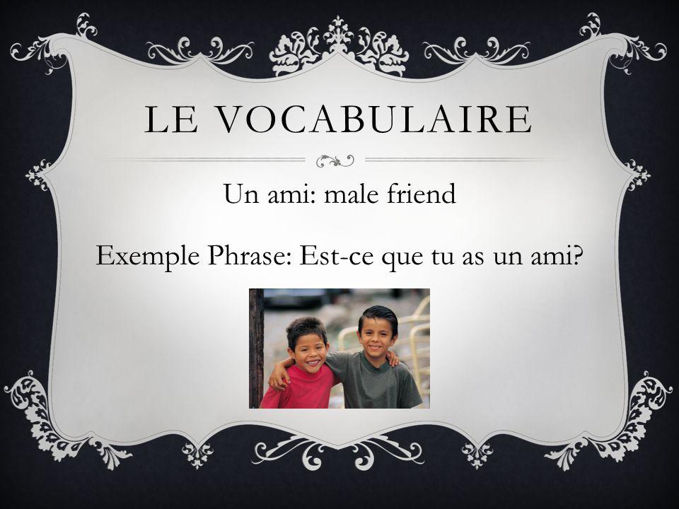 Un ami: male friend Exemple Phrase: Est-ce que tu as un ami