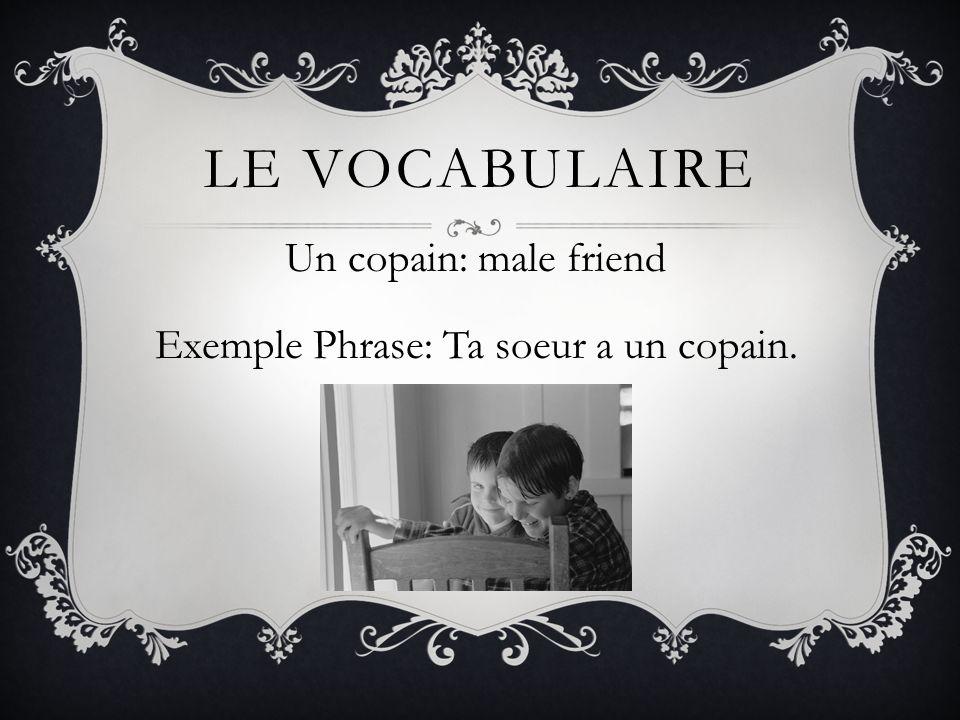 Un copain: male friend Exemple Phrase: Ta soeur a un copain.