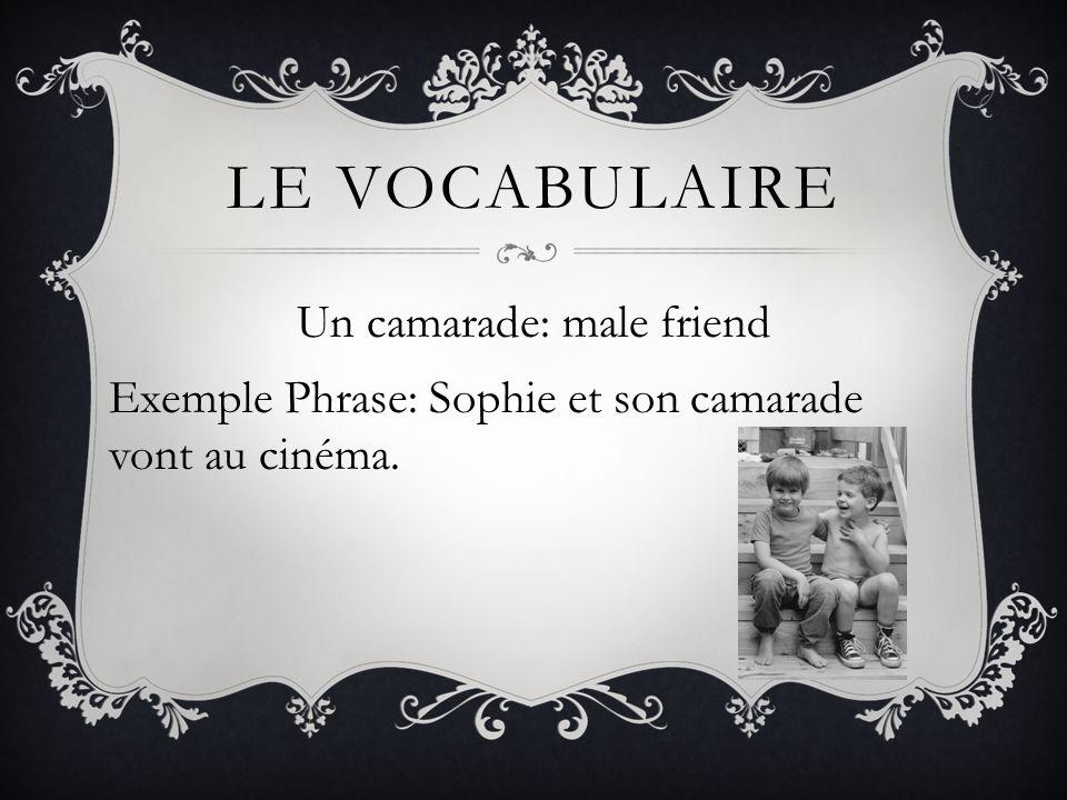 Le vocabulaire Un camarade: male friend Exemple Phrase: Sophie et son camarade vont au cinéma.