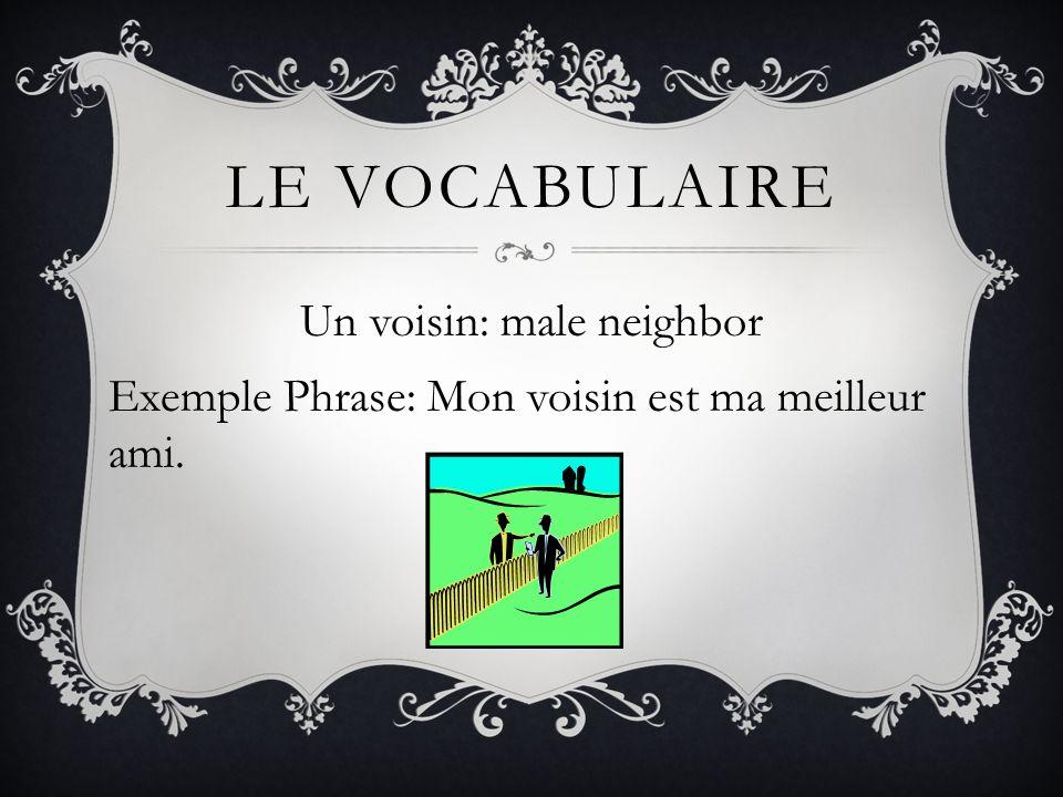 Le vocabulaire Un voisin: male neighbor Exemple Phrase: Mon voisin est ma meilleur ami.