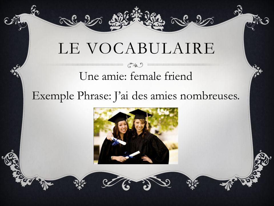Une amie: female friend Exemple Phrase: J'ai des amies nombreuses.