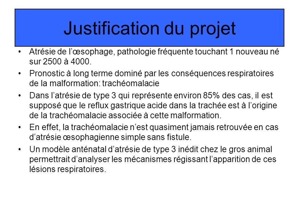 Justification du projet