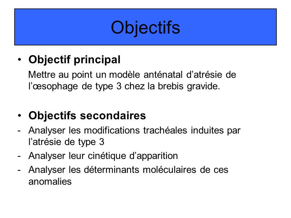 Objectifs Objectif principal Objectifs secondaires