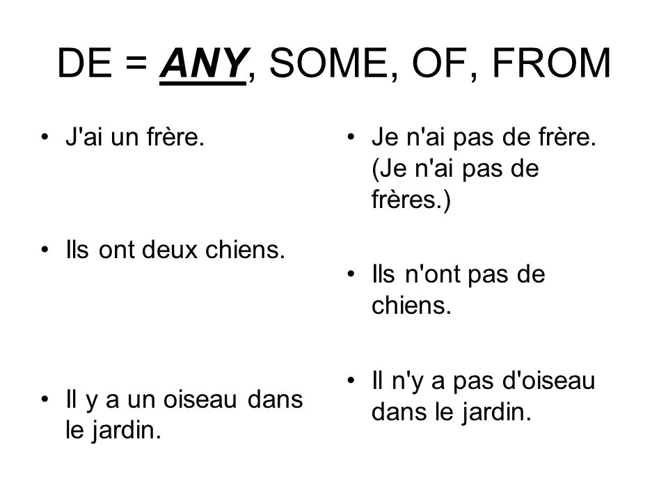 DE = ANY, SOME, OF, FROM J ai un frère. Ils ont deux chiens.