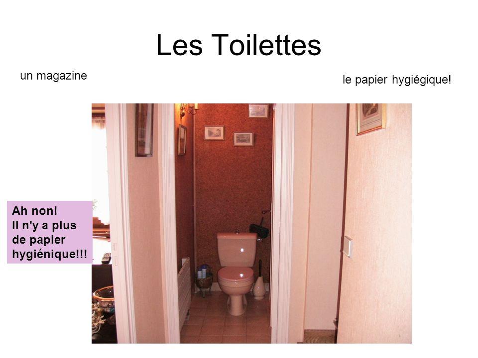 Les Toilettes un magazine le papier hygiégique! Ah non! Il n y a plus