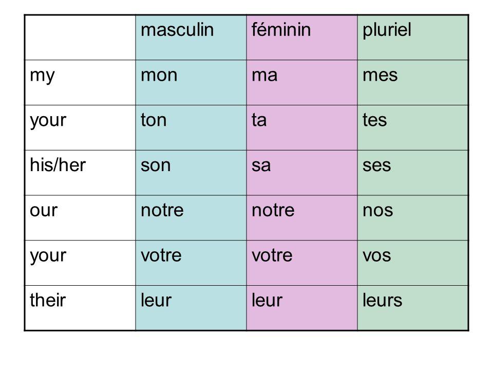 masculin féminin. pluriel. my. mon. ma. mes. your. ton. ta. tes. his/her. son. sa. ses.