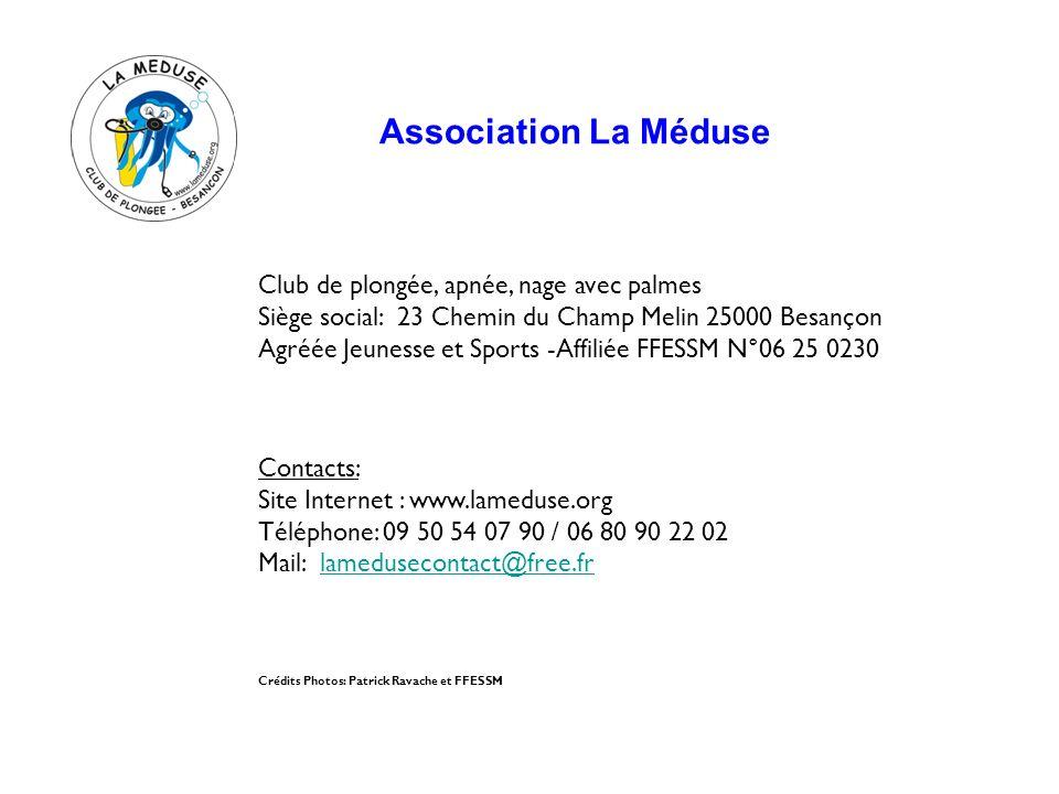 Association La Méduse Club de plongée, apnée, nage avec palmes