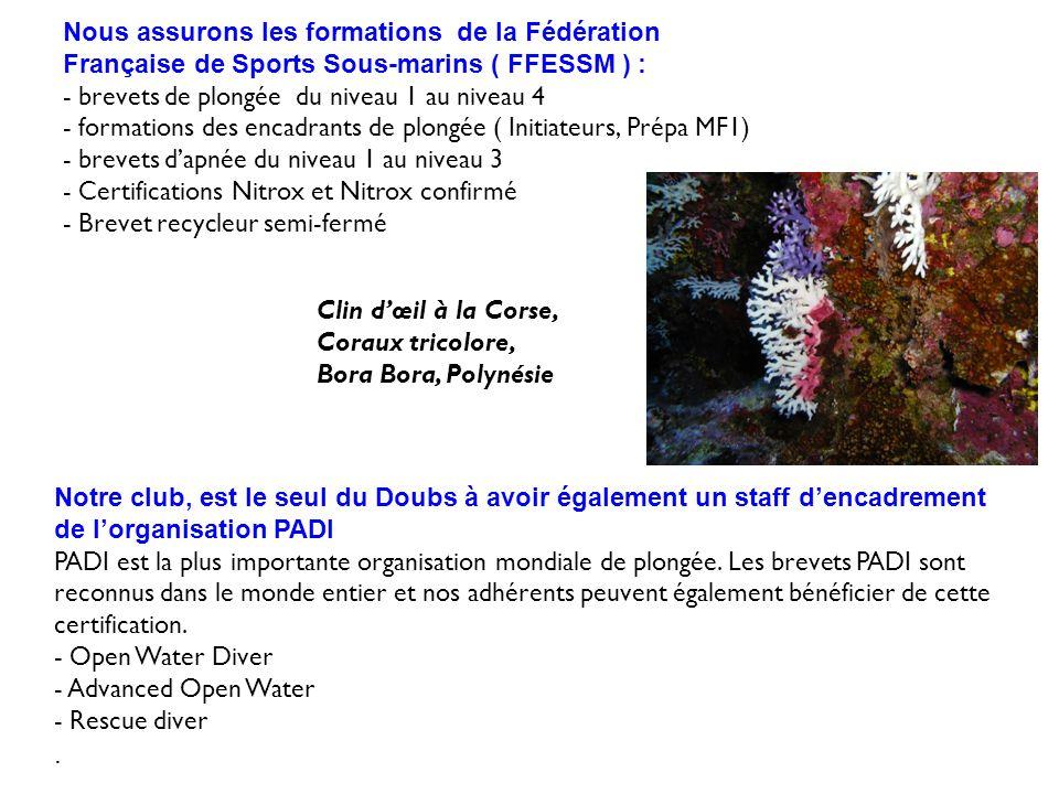 Nous assurons les formations de la Fédération Française de Sports Sous-marins ( FFESSM ) : - brevets de plongée du niveau 1 au niveau 4 - formations des encadrants de plongée ( Initiateurs, Prépa MF1) - brevets d'apnée du niveau 1 au niveau 3 - Certifications Nitrox et Nitrox confirmé - Brevet recycleur semi-fermé