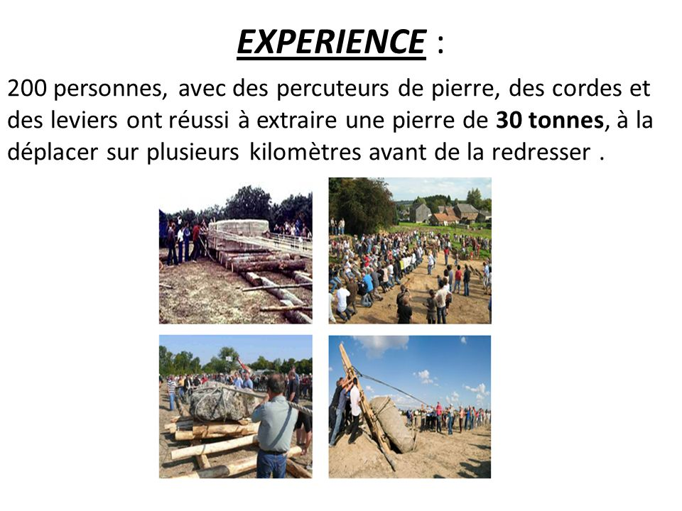 EXPERIENCE :
