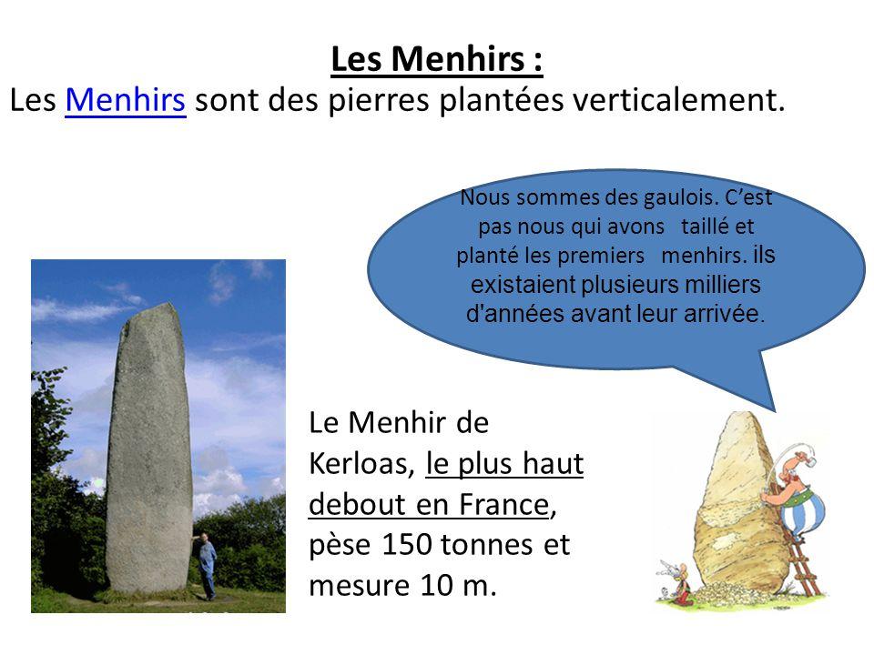 Les Menhirs : Les Menhirs sont des pierres plantées verticalement.