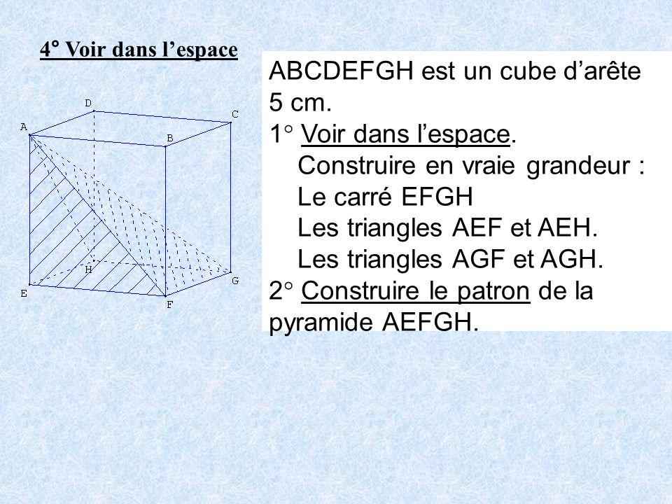 ABCDEFGH est un cube d'arête 5 cm. 1° Voir dans l'espace.