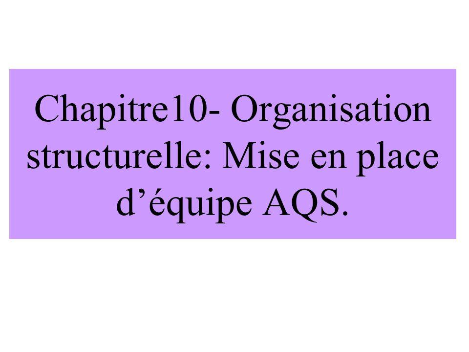 Chapitre10- Organisation structurelle: Mise en place d'équipe AQS.