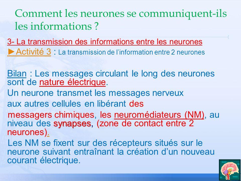 Comment les neurones se communiquent-ils les informations