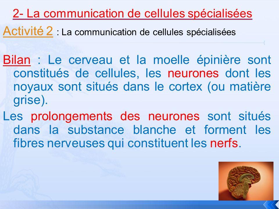 2- La communication de cellules spécialisées