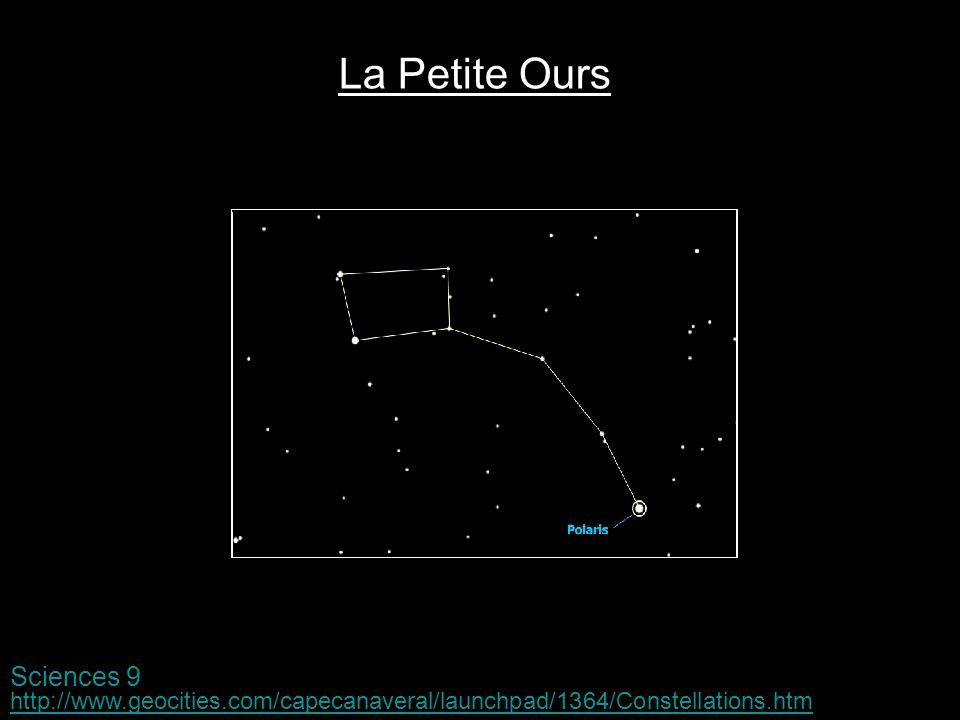 La Petite Ours Sciences 9