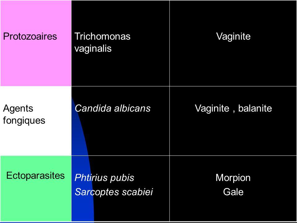 Protozoaires Trichomonas vaginalis. Vaginite. Agents fongiques. Candida albicans. Vaginite , balanite.