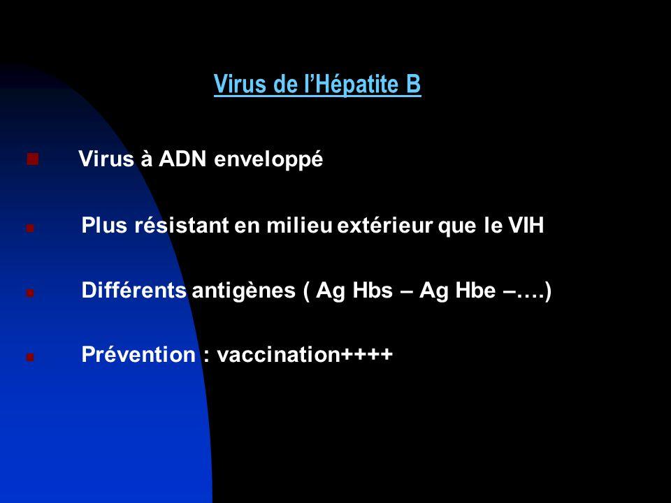 Virus à ADN enveloppé Virus de l'Hépatite B