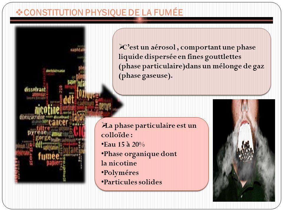 CONSTITUTION PHYSIQUE DE LA FUMÉE