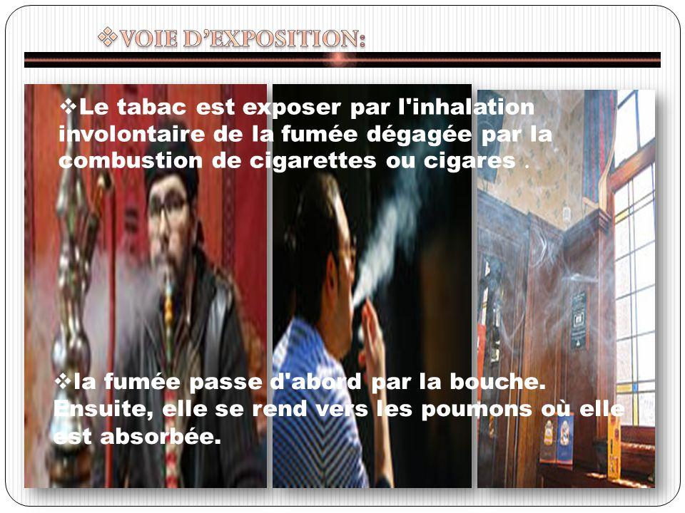 VOIE D'EXPOSITION: Le tabac est exposer par l inhalation involontaire de la fumée dégagée par la combustion de cigarettes ou cigares .