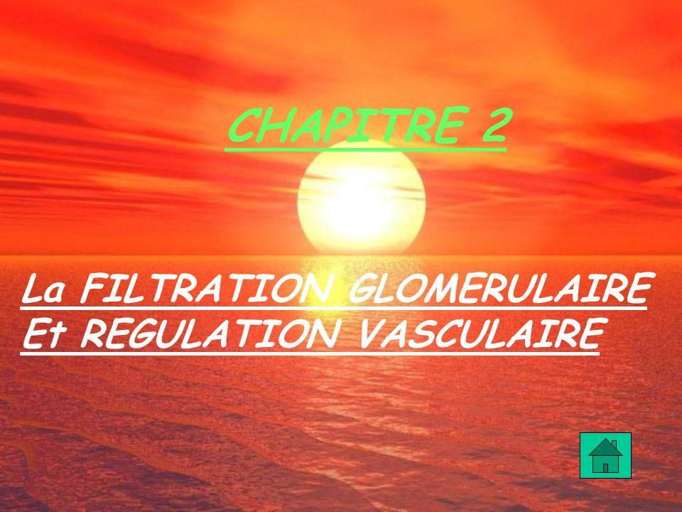 CHAPITRE 2 La FILTRATION GLOMERULAIRE Et REGULATION VASCULAIRE