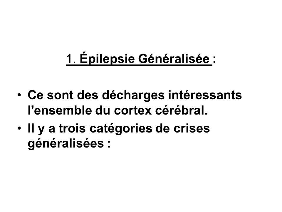 1. Épilepsie Généralisée :
