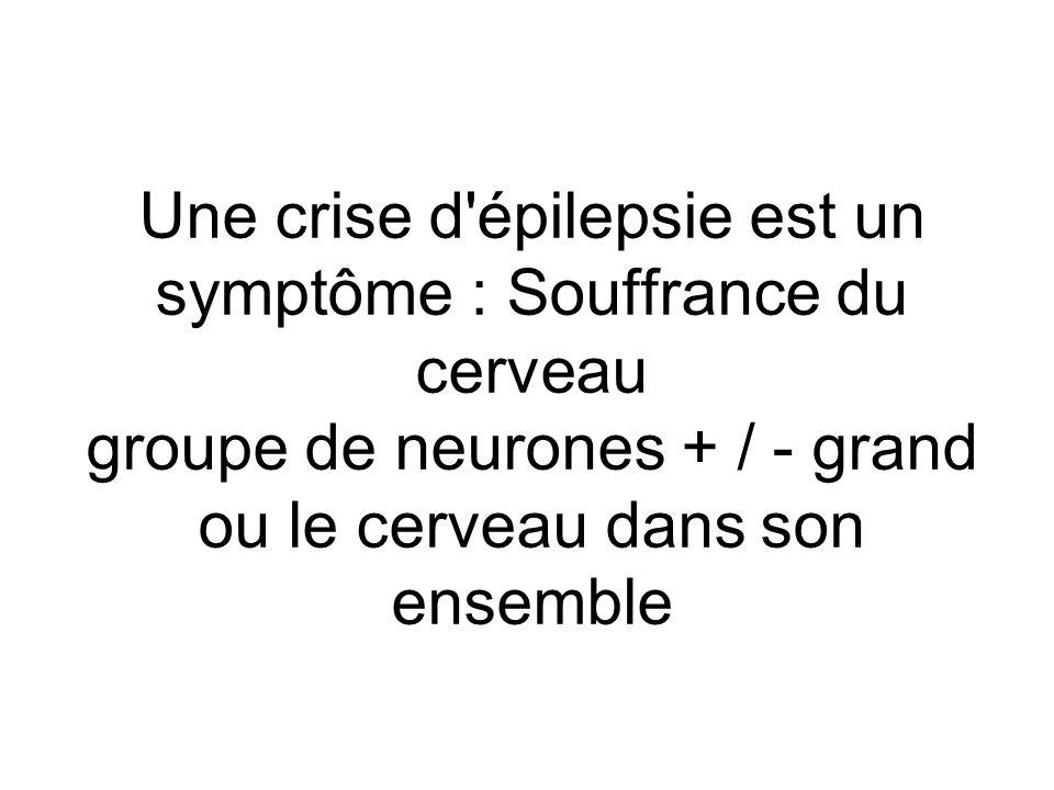 Une crise d épilepsie est un symptôme : Souffrance du cerveau groupe de neurones + / - grand ou le cerveau dans son ensemble