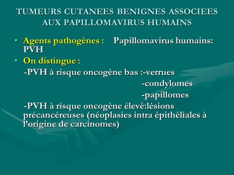 TUMEURS CUTANEES BENIGNES ASSOCIEES AUX PAPILLOMAVIRUS HUMAINS