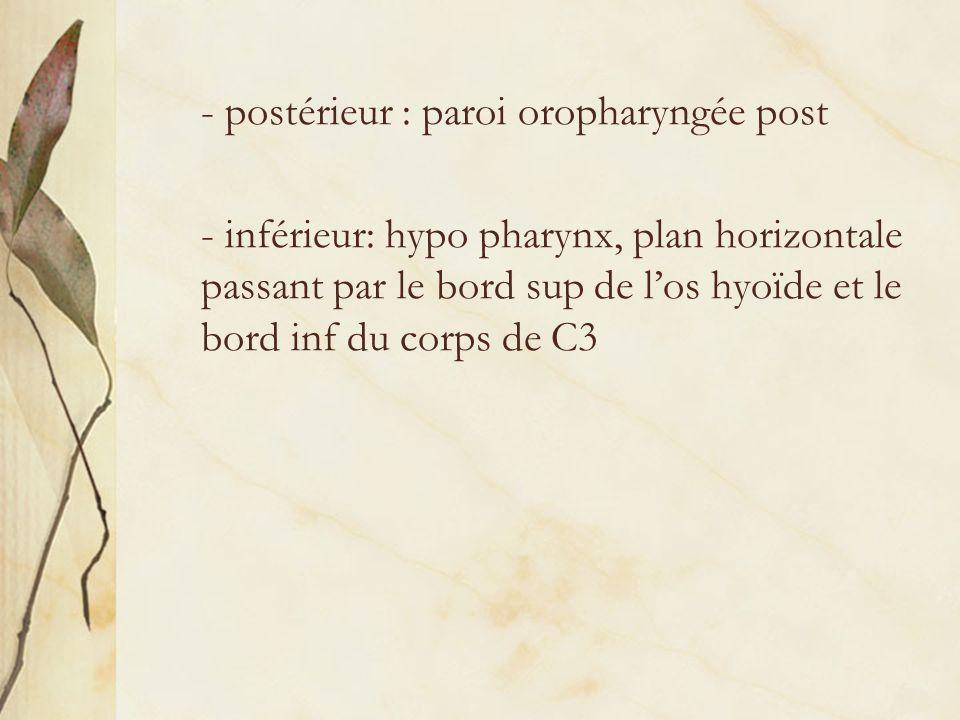 - postérieur : paroi oropharyngée post