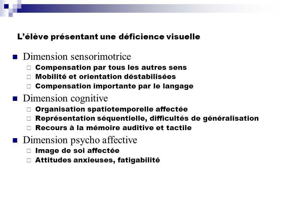 L'élève présentant une déficience visuelle