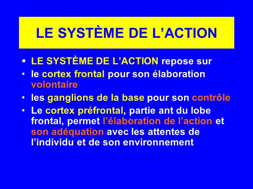 LE SYSTÈME DE L'ACTION LE SYSTÈME DE L'ACTION repose sur