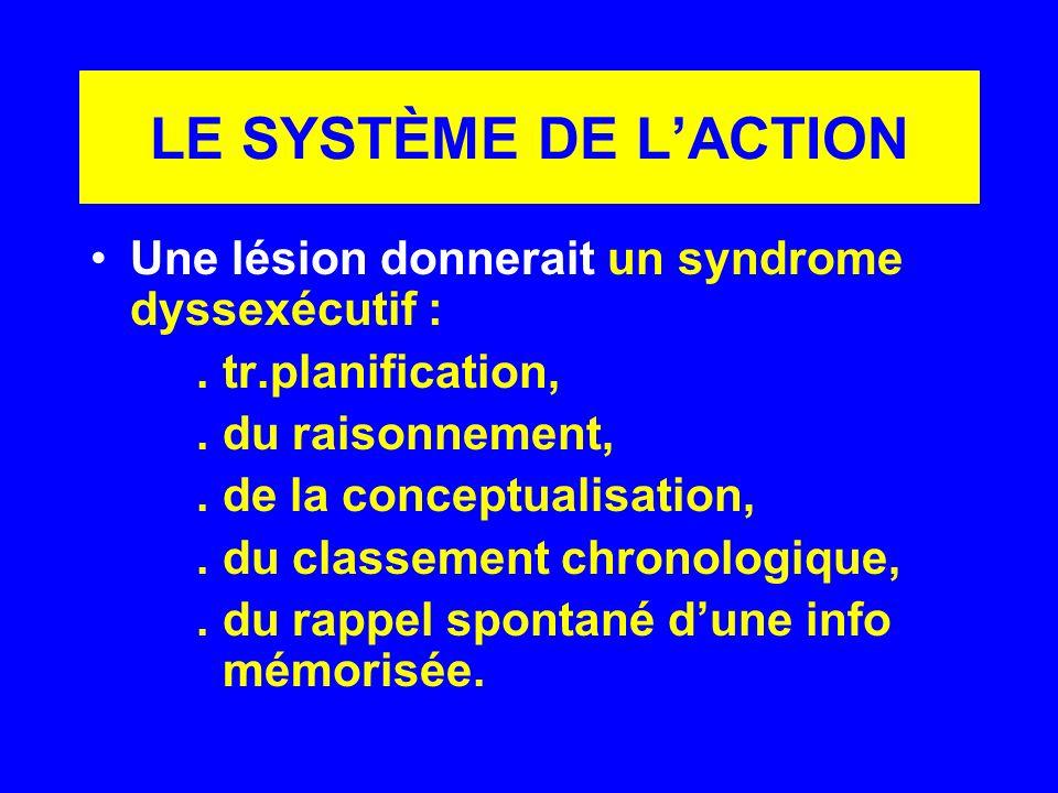 LE SYSTÈME DE L'ACTION Une lésion donnerait un syndrome dyssexécutif :