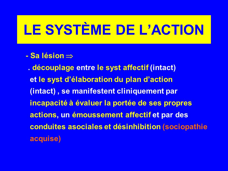 LE SYSTÈME DE L'ACTION - Sa lésion 